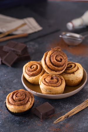 Delicious and tempting homemade cinnamon rolls with chocolate filling for christmas celebration decorated on plate and dark background