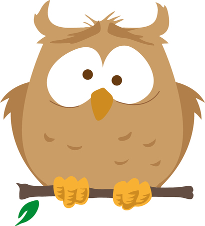 Owl on branch.