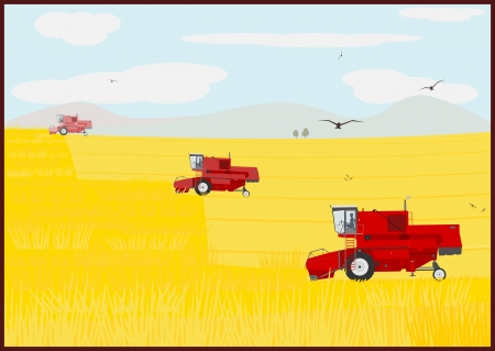 combine: Combine harvester on the field during operation