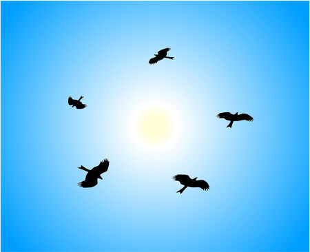 Five eagles flying around sun in blue sky Vector