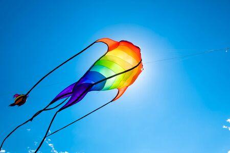 papalote: Kite-Fish como volar en el cielo azul contra el sol en el festival de cometas Foto de archivo