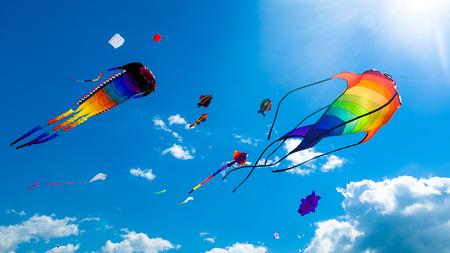 Verschillende vliegers vliegen op de blauwe hemel in de kite festival
