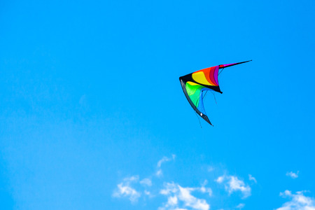 managed: Managed wing-like kite flying on the blue sky in the festival