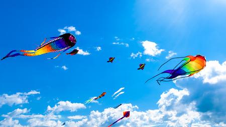 papalote: Varios cometas volando en el cielo azul en el festival de cometas