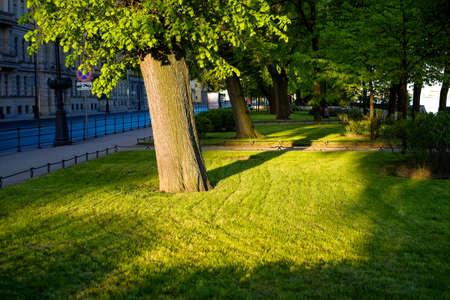 granite park: Park next to granite embankment of river Neva in Petersburg in morning