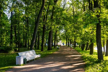 Frau im Park in sonnigen Morgen läuft