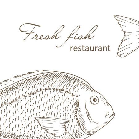 Fondo de los pescados. diseño de la cubierta del menú del restaurante de pescado grande. volante de pesca. plantilla de pescado fresco. mano dibuja peces ilustraciones de vectores. tarjeta de gourmet de pescado. marco de la pesca