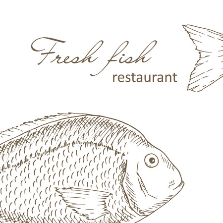 Fish background. Big fish restaurant menu cover design. Fishing flyer. Fresh fish template. Fish hand drawn vector illustrations. Fish gourmet card. Fishery frame Vettoriali