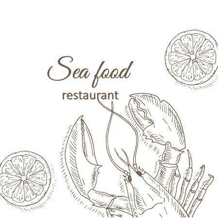 top menu: Lobster background. Lobster and lemon restaurant menu design cover. Lobster flyer. Fresh lobster template. Lobster hand drawn vector illustrations. Lobster and lime card. Top view crayfish frame