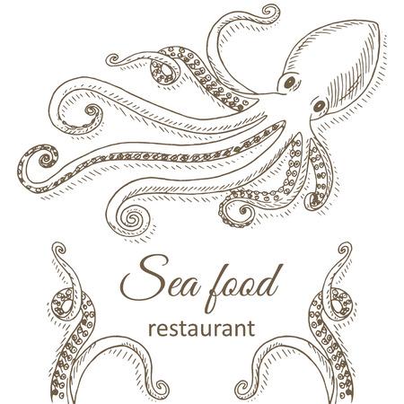 octopus: Octopus background. Octopus and tentacles restaurant menu design cover. Octopus flyer. Fresh octopus template. Octopus hand drawn vector illustrations. Octopus gourmet card. Top view octopus frame