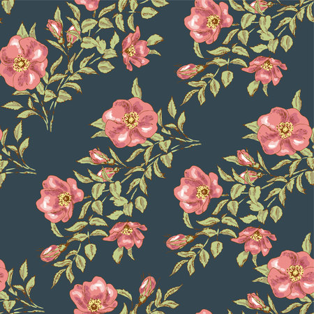 dog rose: Dog rose seamless pattern. Flower wallpaper. Vintage design with dog rose. Romantic floral print. Ornamental hand drawn decoration with dog rose. Botanical sketch vector. Illustration