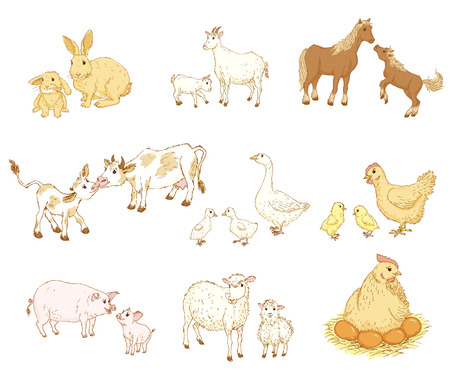 Farm baby animals with mother. Baby and mother animals set. Baby and mother animal family. Baby and mother animals  illustration. Sketch of cute farm baby and mother animal. Mothers Day