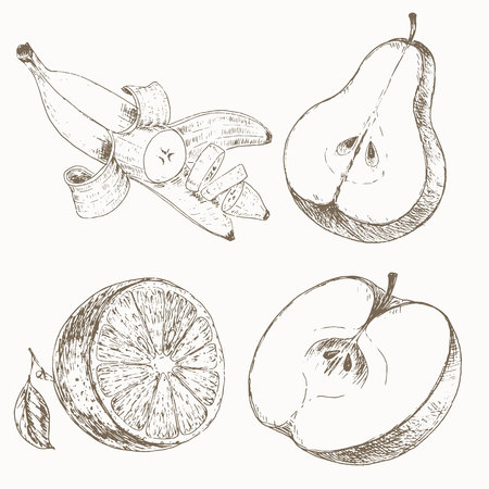 orange cut: Half fruits. Sketch of half fruits. Fruit salad.  illustration of  half fruits. Half fruits vector background. Cut fruits. Organic farm food ingredient. Orange, apple, banana, pear.