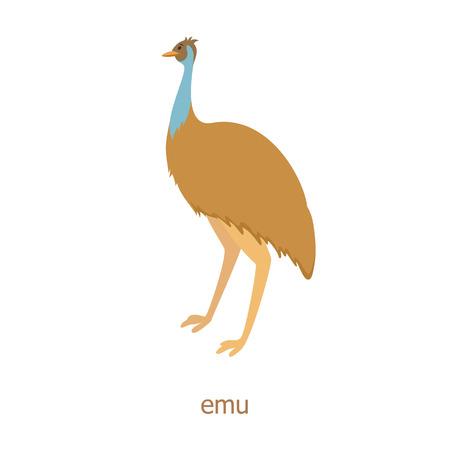 emu: Emu. Cartoon character. Australian endemic emeu.  Zoo illustration. The fauna of the Australian continent. Wild animal. Cute ostrich. Symbol of country. Illustration