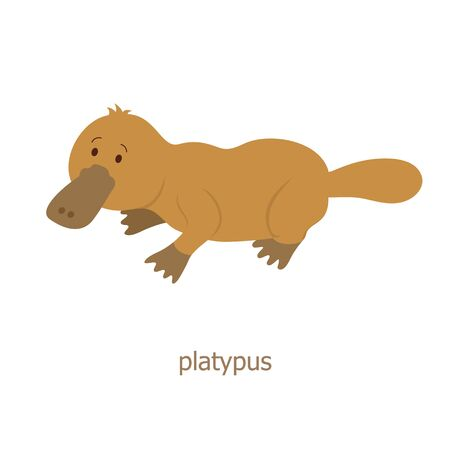 platypus: Platypus. Cartoon character. Australian endemic platypus. Zoo illustration. The fauna of the Australian continent. Wild animal. Cute duckbill. Symbol of country.