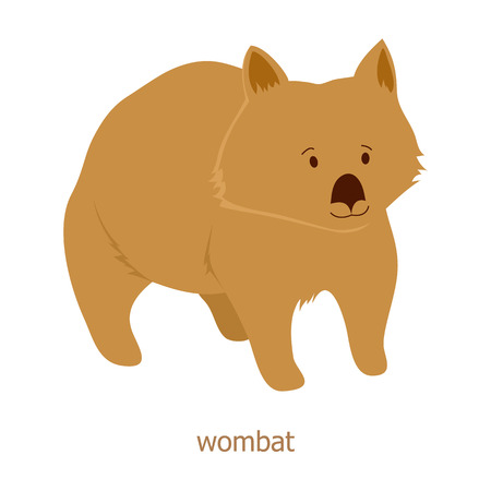 sanctuaries: Wombat. Cartoon character. Australian endemic.  Zoo illustration. The fauna of the Australian continent. Wild animal. Cute wombat. Symbol of country. Illustration