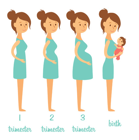 Stages of pregnancy. Changing the woman's body. Pregnant woman and her newborn baby