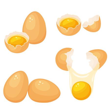 cocina caricatura: Las yemas de huevo establecen. Agrietar los huevos con las yemas. Hornear y cocinar los ingredientes. Cáscara de huevo y proteínas. alimentos orgánicos saludables. producto de la dieta con proteínas. Los huevos crudos rotos dibujos animados con las yemas.
