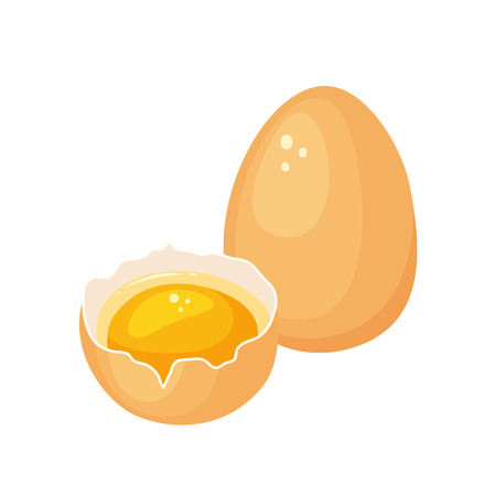 Egg yolk. Crack egg with yolk. Baking and cooking Ingredient. Eggshell and protein. Healthy organic food. Diet product with protein. Raw broken cartoon egg with yolk. Illustration