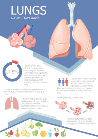 emphysema: Human lung infographic poster with chart, diagram and icon. Healthy food icon useful for lung. Lung medical science infographic with chart, diagram. Vector lung anatomy infographic brochure with chart Illustration
