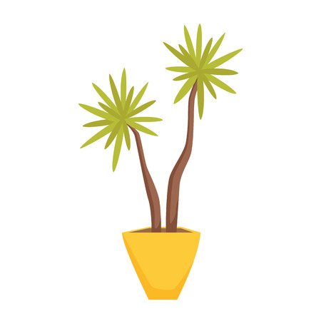 flowerpot: Dracaena in pot. Interior home and office potted plant. Houseplant cartoon vector illistration. Interior decoration. Flowerpot drowth and gardening.