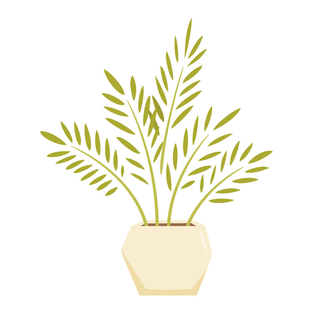 home office interior: Cycas in pot. Interior home and office potted plant. Houseplant cartoon vector illistration. Interior decoration. Flowerpot drowth and gardening.