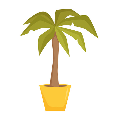 home office interior: Palm tree in pot. Interior home and office potted plant. Houseplant cartoon vector illistration. Interior decoration. Flowerpot drowth and gardening.