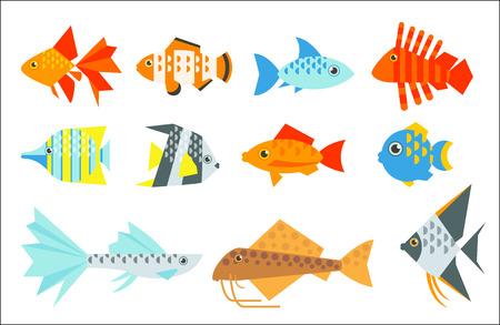 Aquarium fish set. Goldfish, angelfish, catfish, veiltail, clownfish, guppy, tetraodon, globefish, butterflyfish, radiata lionfish. The inhabitants of marine reef aquariums and ponds flat illustration