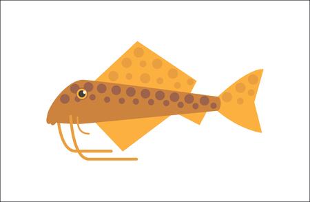 inhabitants: Aquarium fish. Catfish flat illustration. The inhabitants of marine reef aquariums and ponds Illustration