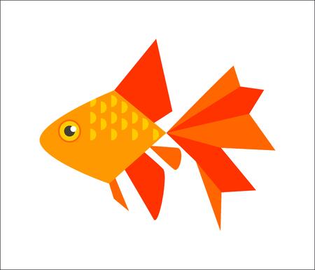 Aquarium fish. Goldfish or veiltail flat illustration. The inhabitants of marine reef aquariums and ponds