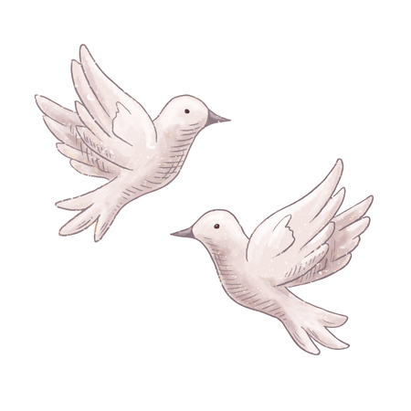 Flying dove couple Illustration