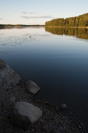 Финляндия: Lakeside view with already setting sun. Small mallard swimming across the frame. Stones and gravel in foreground.