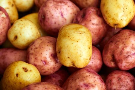 Wet raw potatoes closeup Stock Photo - 17631604