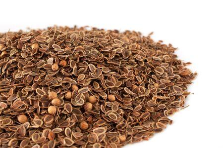 saunf: fennel seeds