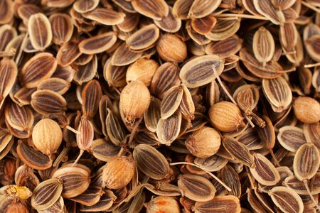 saunf: Sprinkle of fennel seeds Stock Photo