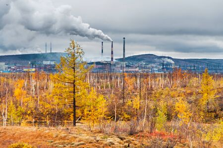 pollute: Smokestack smokestacks that pollute the atmosphere. Ecological catastrophy. Polar tundra, deep autumn. Cloudy day, bad lighting conditions.