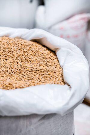 Open bag full grain malt.