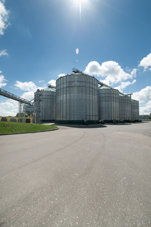 High metal silos for storage of wheat and barley. Sunny day, the blue sky. Stock Photo