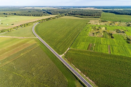 Green agricultural and wheat field. The fields are separated by asphalt road. View from a great height Stock Photo