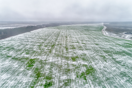 Agricultural field under the snow. 스톡 콘텐츠