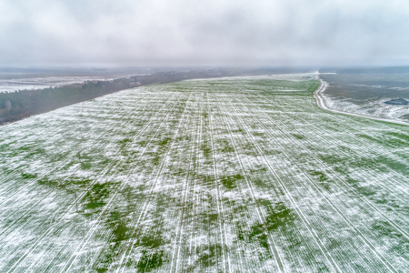 Agricultural field under the snow. 스톡 콘텐츠 - 118486493