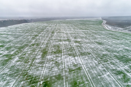 Agricultural field under the snow. 스톡 콘텐츠 - 118481549
