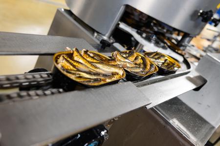 Fish cans on a plate conveyor. Фото со стока