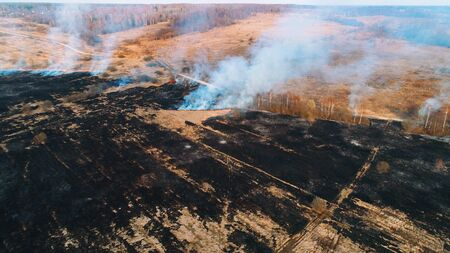 Large burnt field covered in black soot. Fire spreads in several places. Great smoke from burning places.