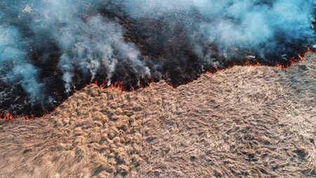 Forest and field fire. Dry grass burns, natural disaster. Aerial view. Shooting from a small height, a section of the fire shot close-up.