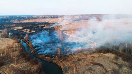 Strong fire in the forest. Fire spreads in a united front, strong smoke from the burning place.
