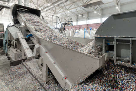 Plastic recycling plant. Conveyor with shredded plastic