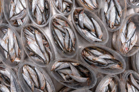Lots of plastic jars filled with sea sprat. Canned fish.