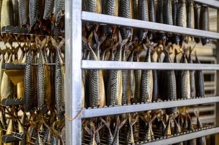 Hot smoked mackerel. The ocean fish is suspended on metal rods