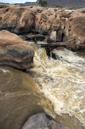 the rapids: Rapids